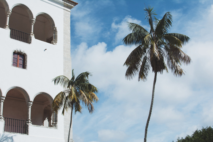 Sintra palace, palm trees, ph by José Chan