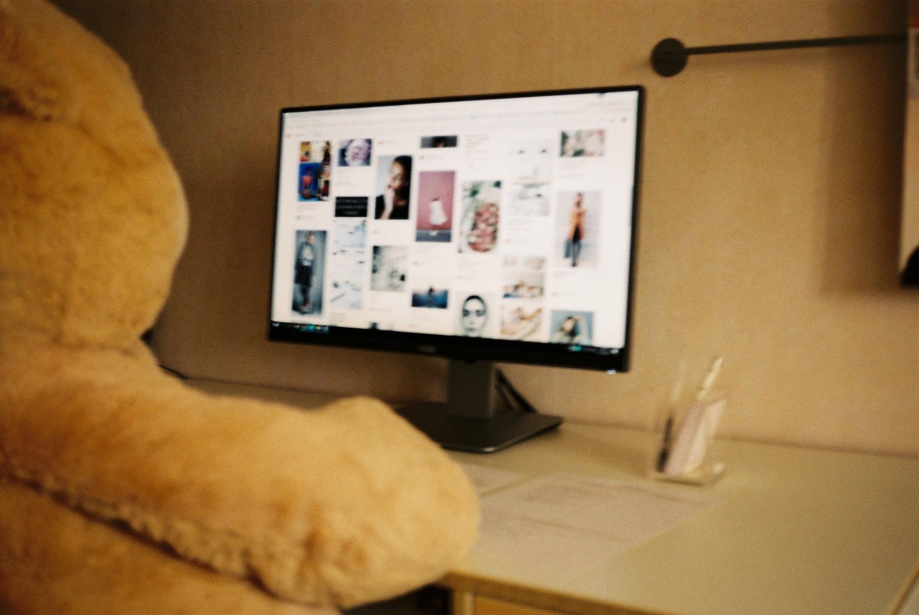 Bear, Ted